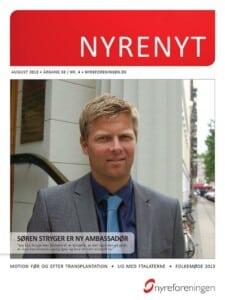 nyrenyt-aug-2013