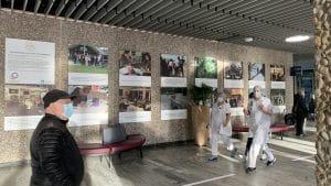 Spændende billeder er udstillet i Rigshospitalets forhal